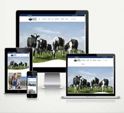 Şarküteri ve Süt Ürünleri E-Ticaret Paketi Soft Milk v5.0